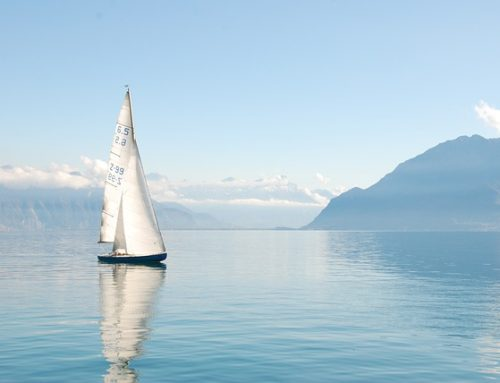 The Friday File: August 23rd, 2019 | SEO, Investing and Sailing Starts